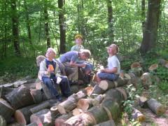 私立森の幼稚園「青いアネモネ」