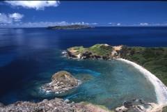 移入種除去の後に行く(予定)トレッキング 小富士から「南崎」海岸