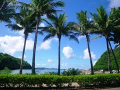 穏やかな午後 母島の玄関「沖港」