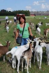デンマーク最大のオーガニック農園 クヌセンルン(ニールセン北村朋子さん)