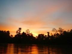 キナバタンガン川の夕暮れ